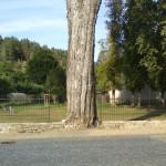 Park Bludník
